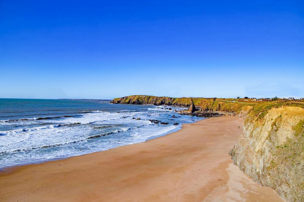 Carnivan Beach New Ross